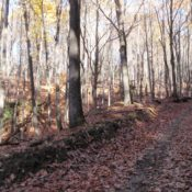 New Trail System Developing in Elk County