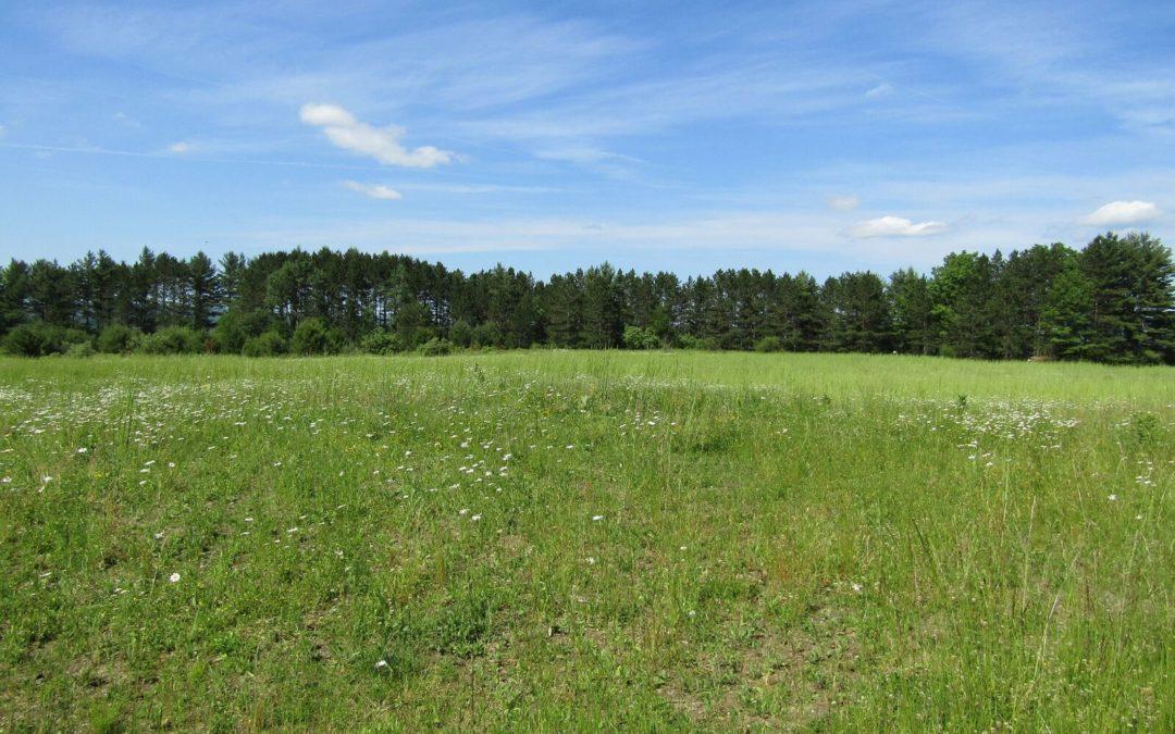 Woodring Farm Interpretive Hiking Trail & Elk Viewing