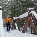 5-CrossCountrySkier Trail