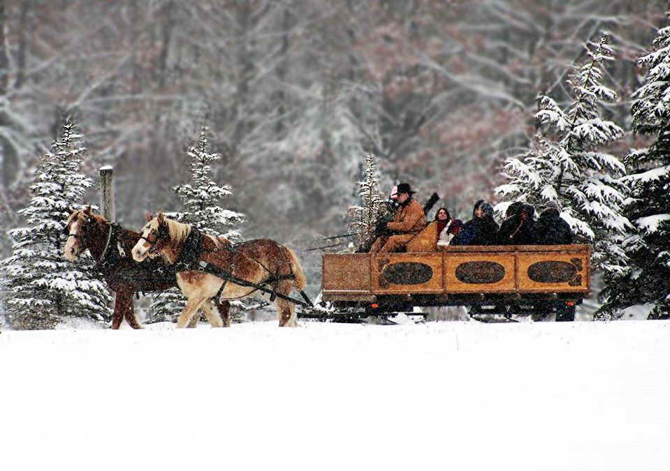 10 Fun Things to Do this Winter