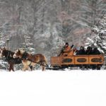 9-ECVC SleighRidewinter_blurred_bkg