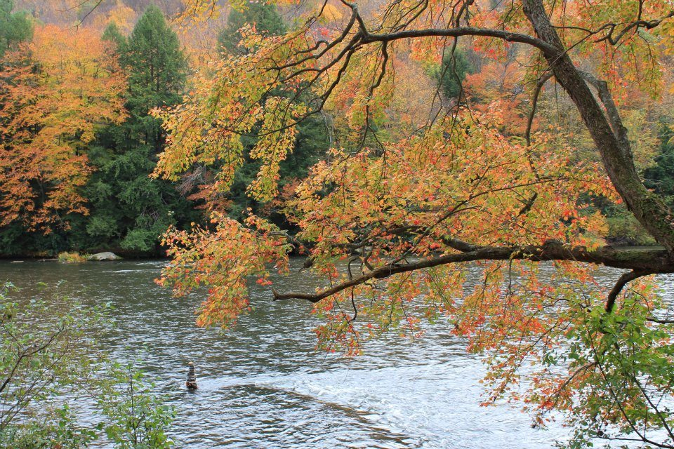 True Tales of the Clarion River: Don't Dynamite Fish or Go to Sleep on the Gunwale