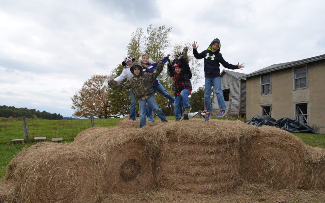 Paul's Pumpkin Patch – Fall Family Fun on the Farm