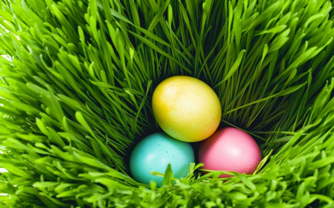 Celebrate Easter in the Pennsylvania Great Outdoors