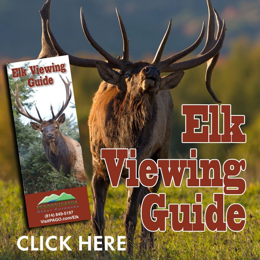 Winter Lodging Specials Visiting The Pa Great Outdoors