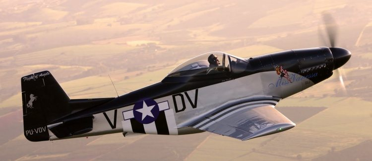 FlightofTitans-t-51DMustangs