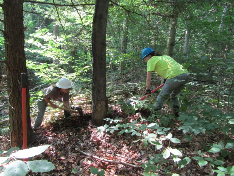 Allegheny National Forest Stream Reclamation Project