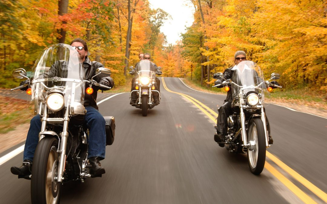 Your Guide to Scenic Rides
